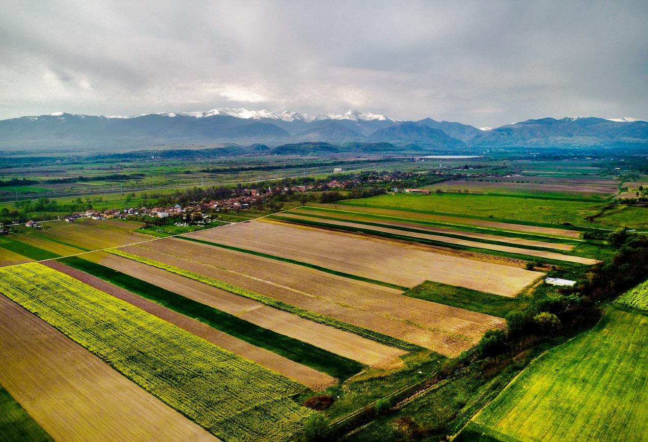 Panorama satului Reea spre muntele Retezat